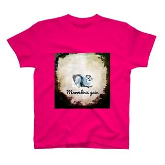 バンド T-shirts