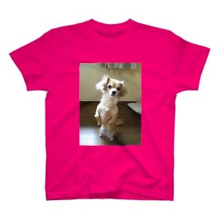かわいい犬のチャイです。 T-shirts