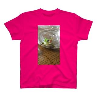 とびだすカエル君 T-shirts