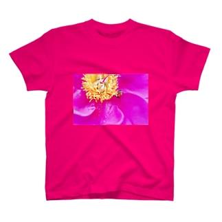 虫と雌蕊1 T-shirts