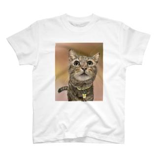 あずおくん Tシャツ