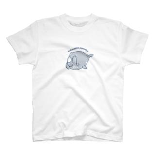 ゆるホエール(シングルカット)〜セミクジラ〜 Tシャツ