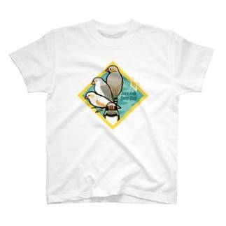 キンカチョウプール Tシャツ