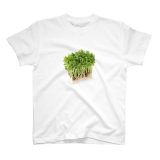 文鳥にモテモテ Tシャツ