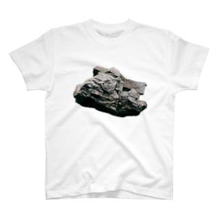 岩 Tシャツ