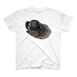 オヒキコウモリ Tシャツ