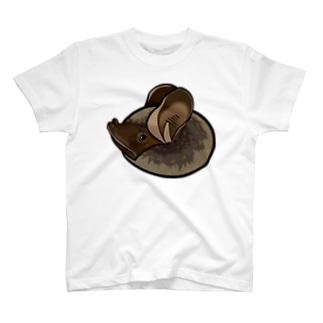 テングコウモリ Tシャツ