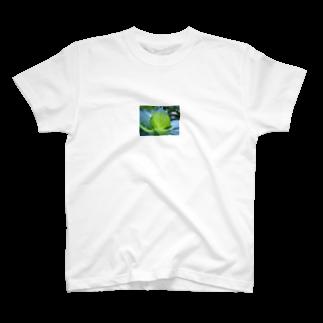 abelestの紫陽花の葉脈 Tシャツ