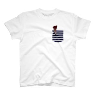 【Tシャツ】ポケットチワワ♡ Tシャツ