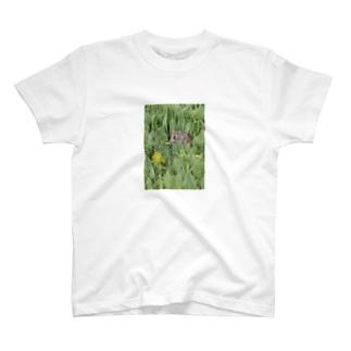 ナキウサギinメタカラコウ Tシャツ