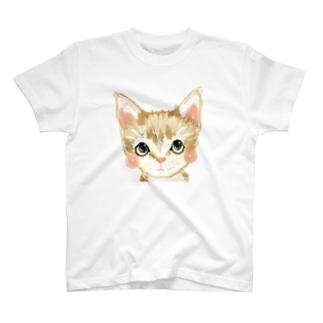 tama Tシャツ