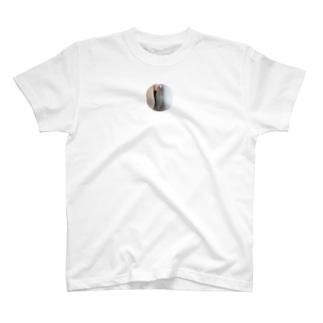 クマゼミピアス Tシャツ