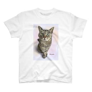 ロックちゃん Tシャツ