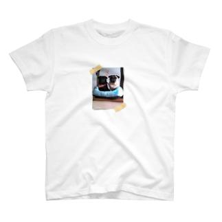 ココア&はなみ Tシャツ