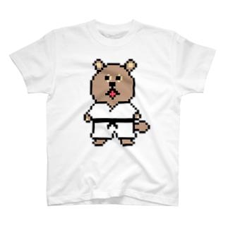 平成最後のド天才たぬき Tシャツ