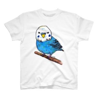 セキセイインコ Tシャツ