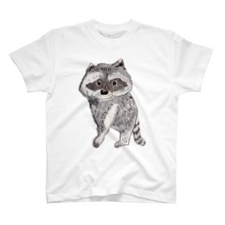 あらいぐま Tシャツ