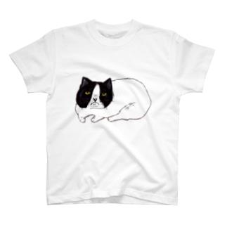 ごめんねこ Tシャツ