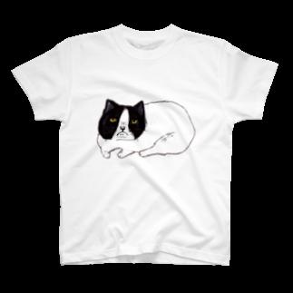 アコルのごめんねこ Tシャツ
