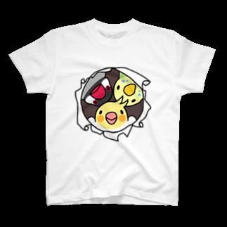 まめるりはことりのなかよしインコ【まめるりはことり】Tシャツ