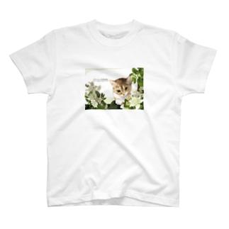 neupy003 Tシャツ