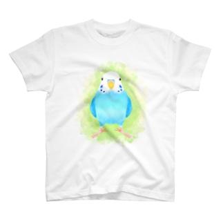 セキセイインコ ブルー【まめるりはことり】 Tシャツ
