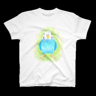 まめるりはことりのセキセイインコ ブルー【まめるりはことり】 Tシャツ