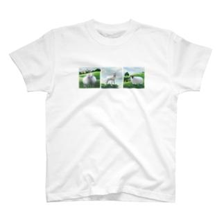 いっしょに過ごそう Tシャツ