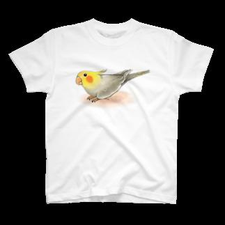 まめるりはことりのオカメインコ レキ【まめるりはことり】Tシャツ