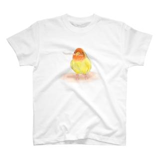 コザクラインコ レイ【まめるりはことり】 Tシャツ