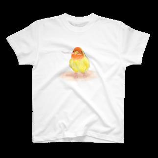 まめるりはことりのコザクラインコ レイ【まめるりはことり】 Tシャツ