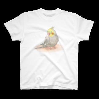 まめるりはことりのオカメインコ シナモン【まめるりはことり】Tシャツ