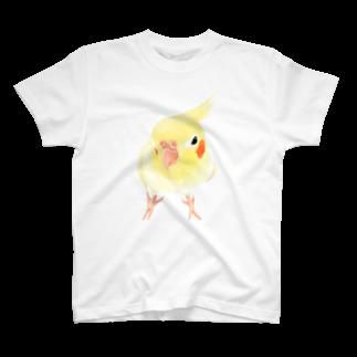 オカメインコ おすましルチノー【まめるりはことり】 Tシャツ
