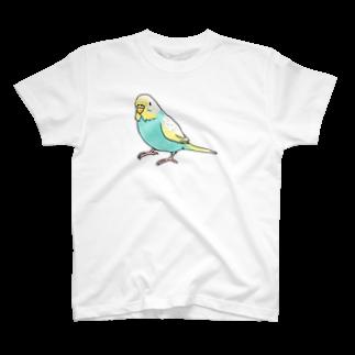 ごきげんセキセイインコ【まめるりはことり】 Tシャツ