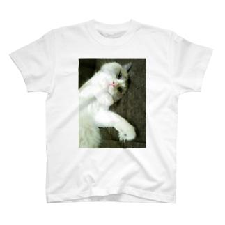 うらめしねこ Tシャツ