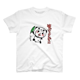 パンダinぱんだ(笹ぶつけんぞ!!) Tシャツ