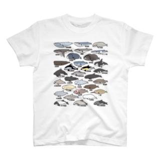 ゆるホエール(和名・漢字) Tシャツ