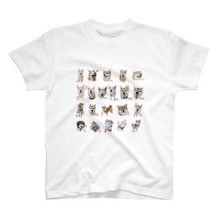 柴って描いてコレクション01 Tシャツ