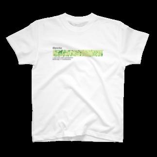 Pocke(ぽっけ)の2017年、芝初め。Tシャツ