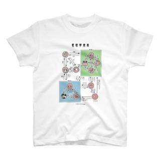 星座相関図Tシャツ Tシャツ