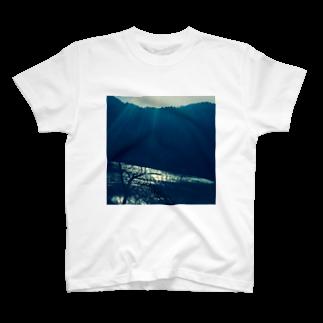 hikari Tシャツ
