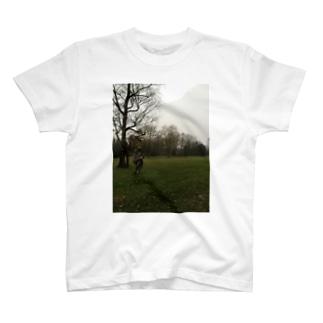 カトヴィツェの女神 Tシャツ