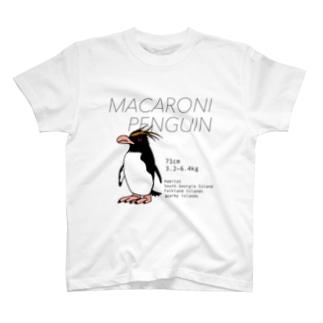 マカロニペンギン Tシャツ