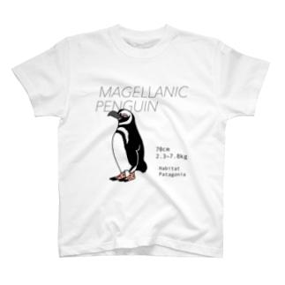 マゼランペンギン Tシャツ