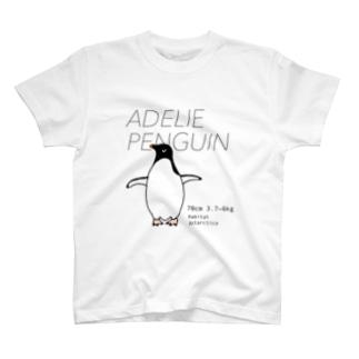 アデリーペンギン Tシャツ