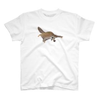 家にいそぐエゾモモンガ Tシャツ