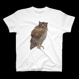 gomaphのこちらを観察するシマフクロウTシャツ