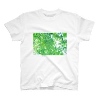 自然と僕 Tシャツ