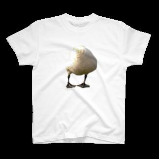あしゅりーのドイツのトリTシャツ