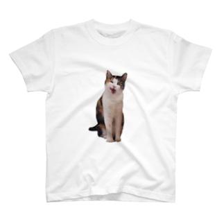 てへぺろぺろ Tシャツ